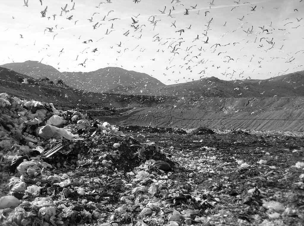 bonifica siti inquinati